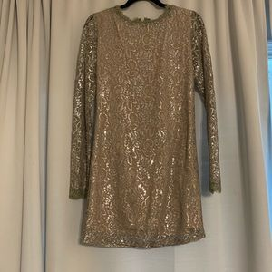 Endless Rose Silver Metallic Dress